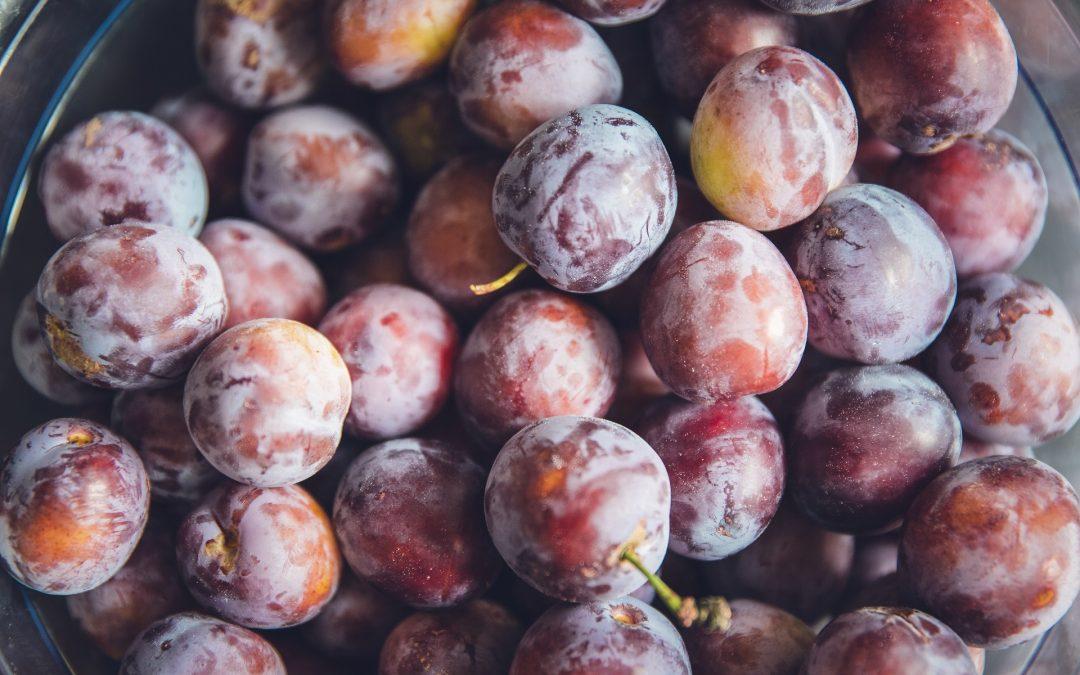 https://www.zfd.sk/wp-content/uploads/2020/04/príprava-ovocia-na-kvas-1080x675-1.jpg
